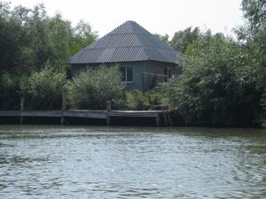 The garden plot on a small island in the Danube Delta